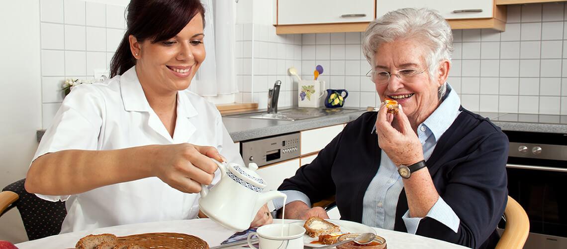 Senior Citizen Home Assistance